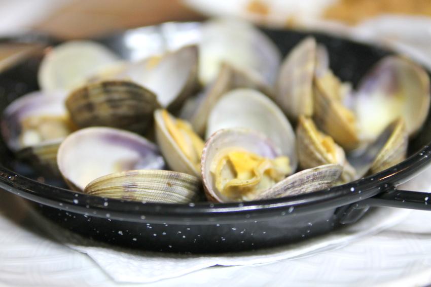 olika typer av musslor