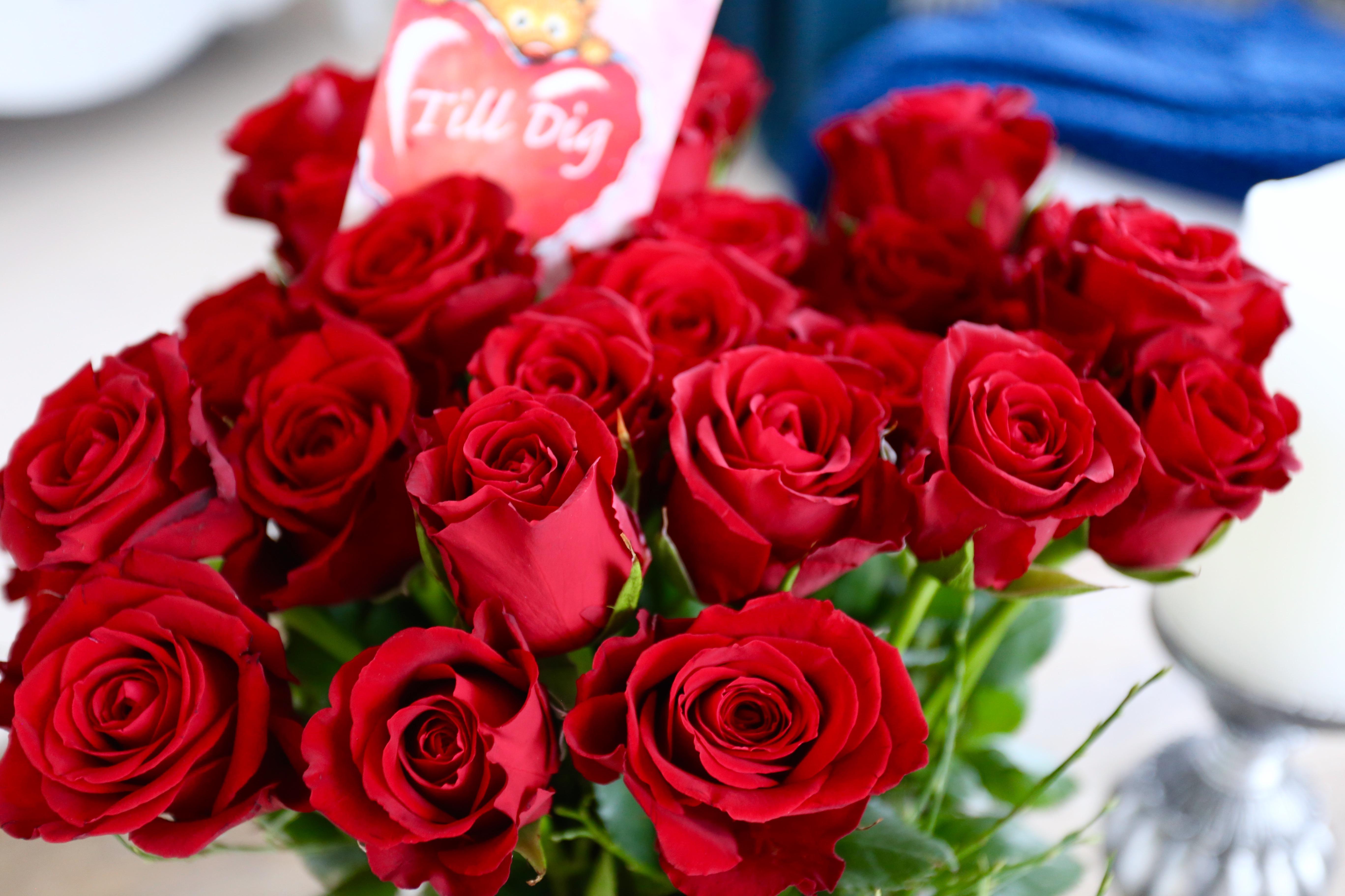 14 mars alla hjärtans dag svart pusy.com